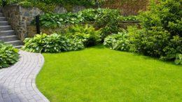 Curare il giardino
